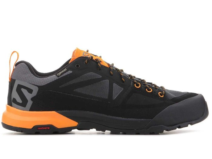 Salomon X Alp Spry GTX 402453